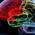 Иностранный язык против болезни Альцгеймера