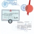Как происходит легализация документов