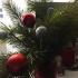Как сотрудники «Прима Висты» провели новогодние праздники